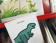 Dinosaurs book section